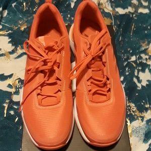 New in box Addidas Running Sneaker
